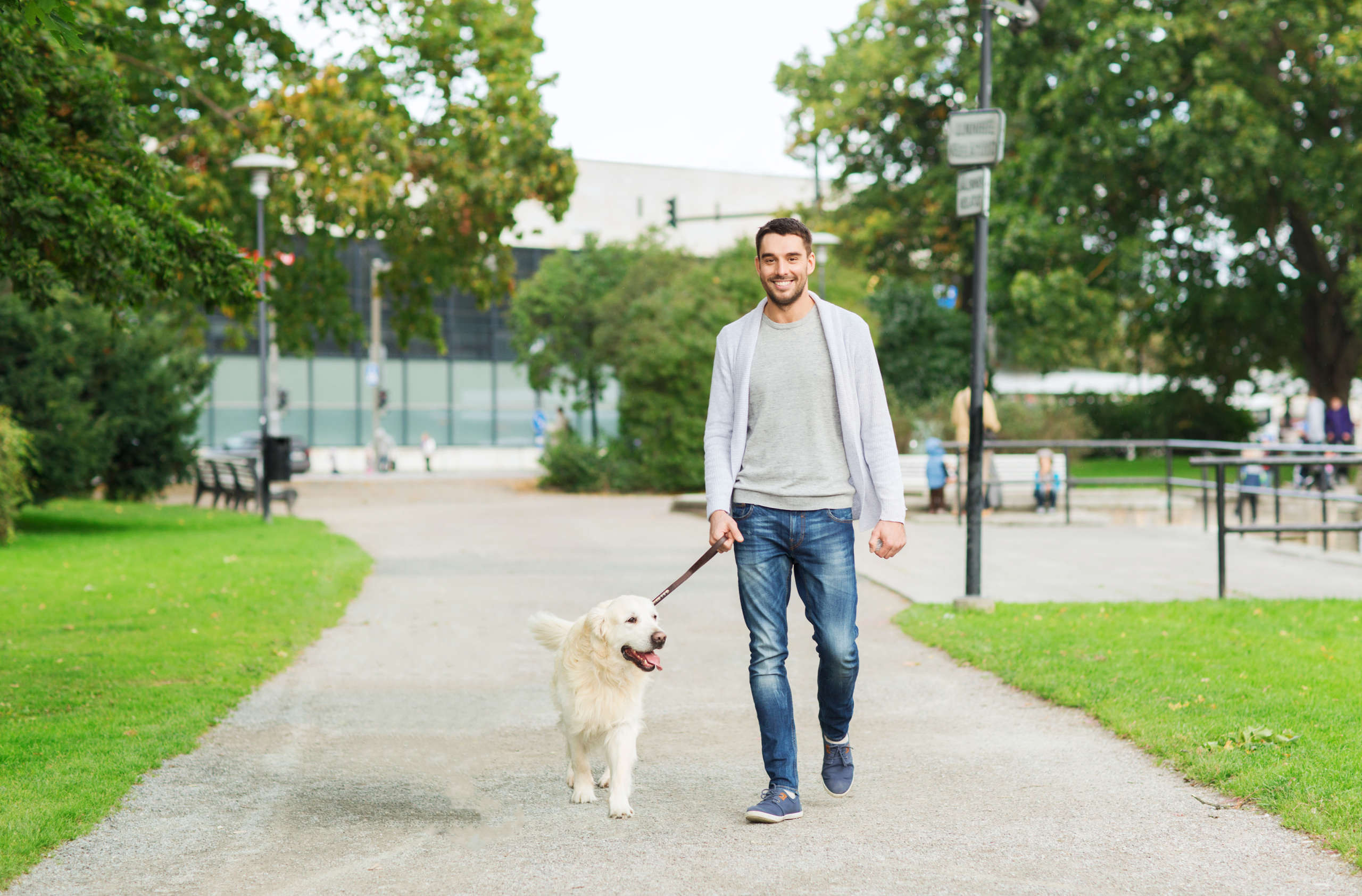 guy walking a dog